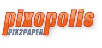 Pixopolis test