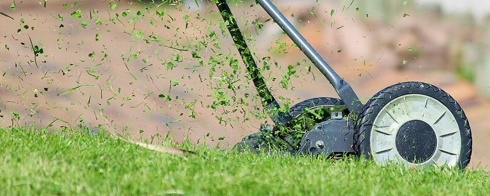handgräsklippare bäst i test